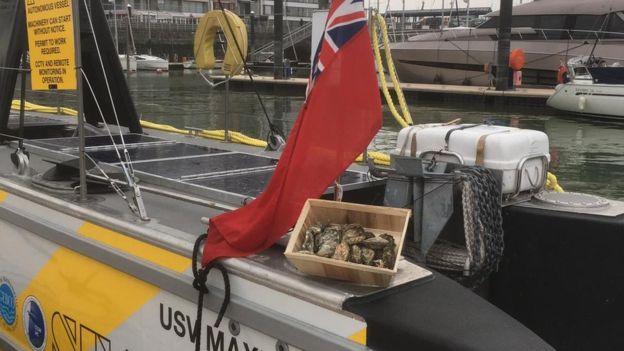 Akankah kapal tanpa pelaut jadi masa depan perdagangan?